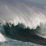 Western Web's Tests New Tsunami Drill